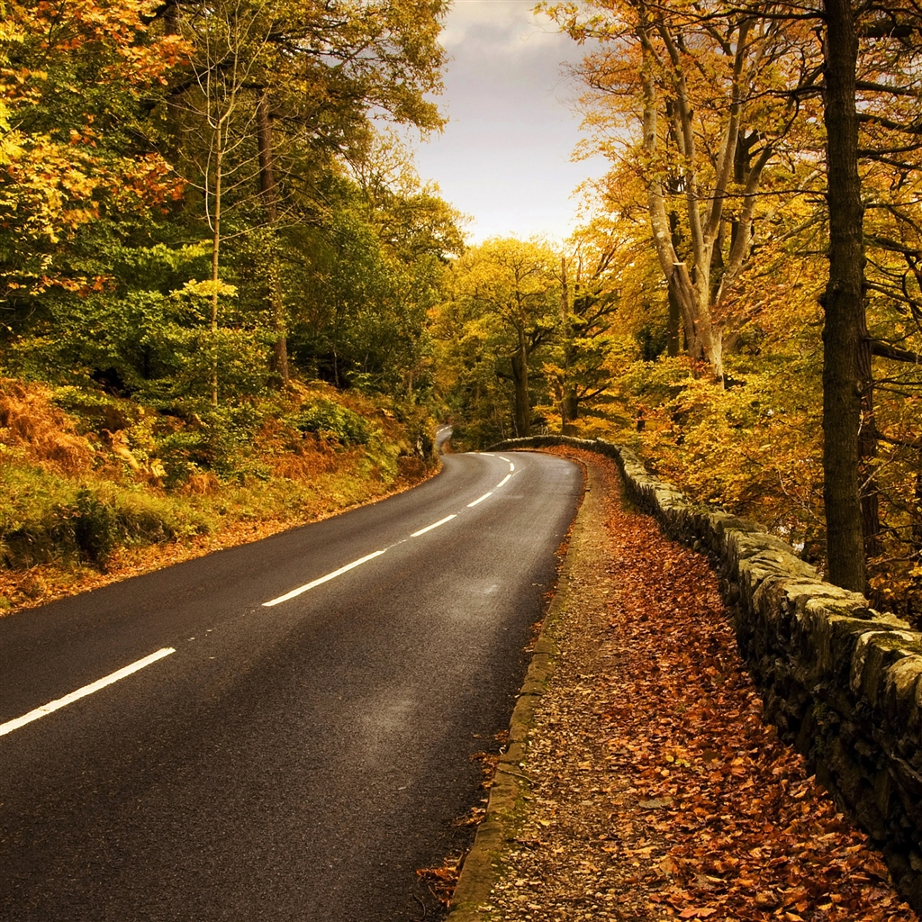 Autumn-Road-2-ipad-4-wallpaper-ilikewallpaper_com_1024