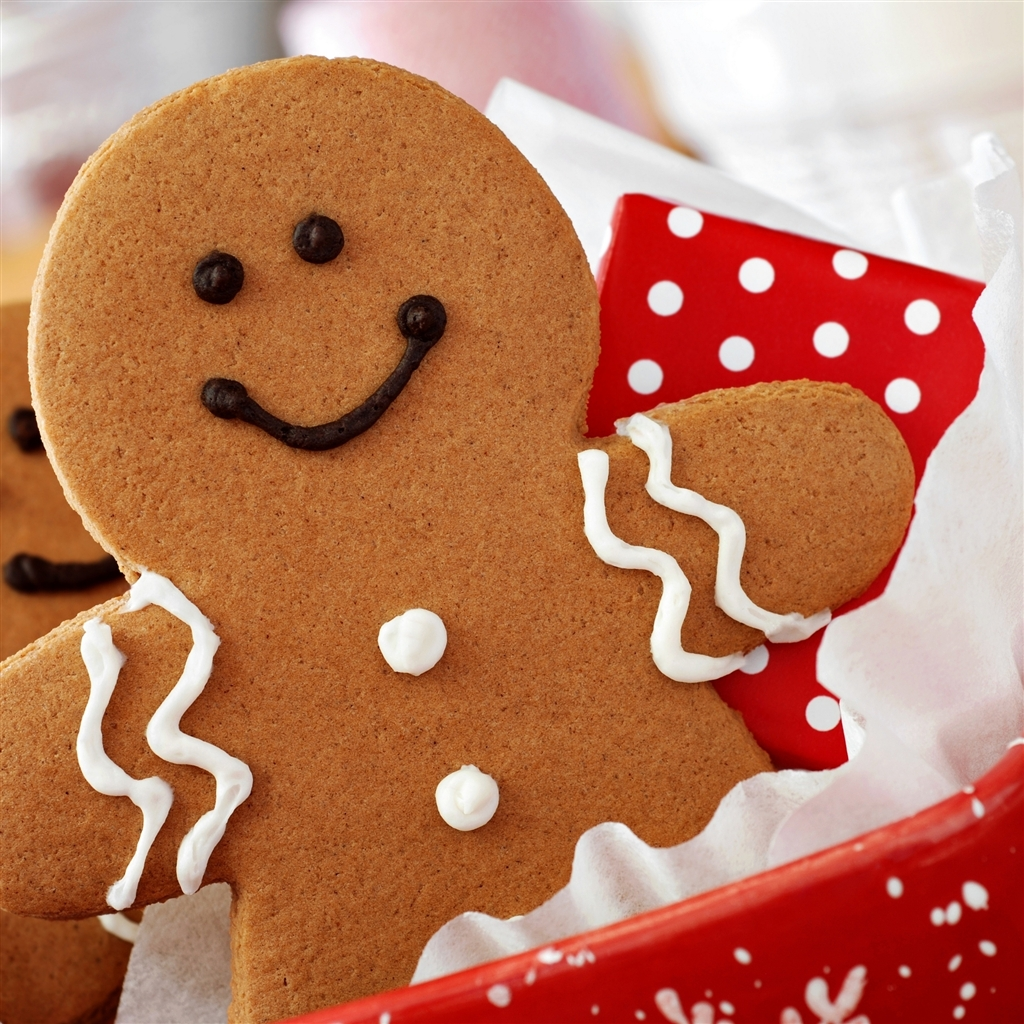 Christmas-And-New-Year-Cookies-ipad-4-wallpaper-ilikewallpaper_com_1024