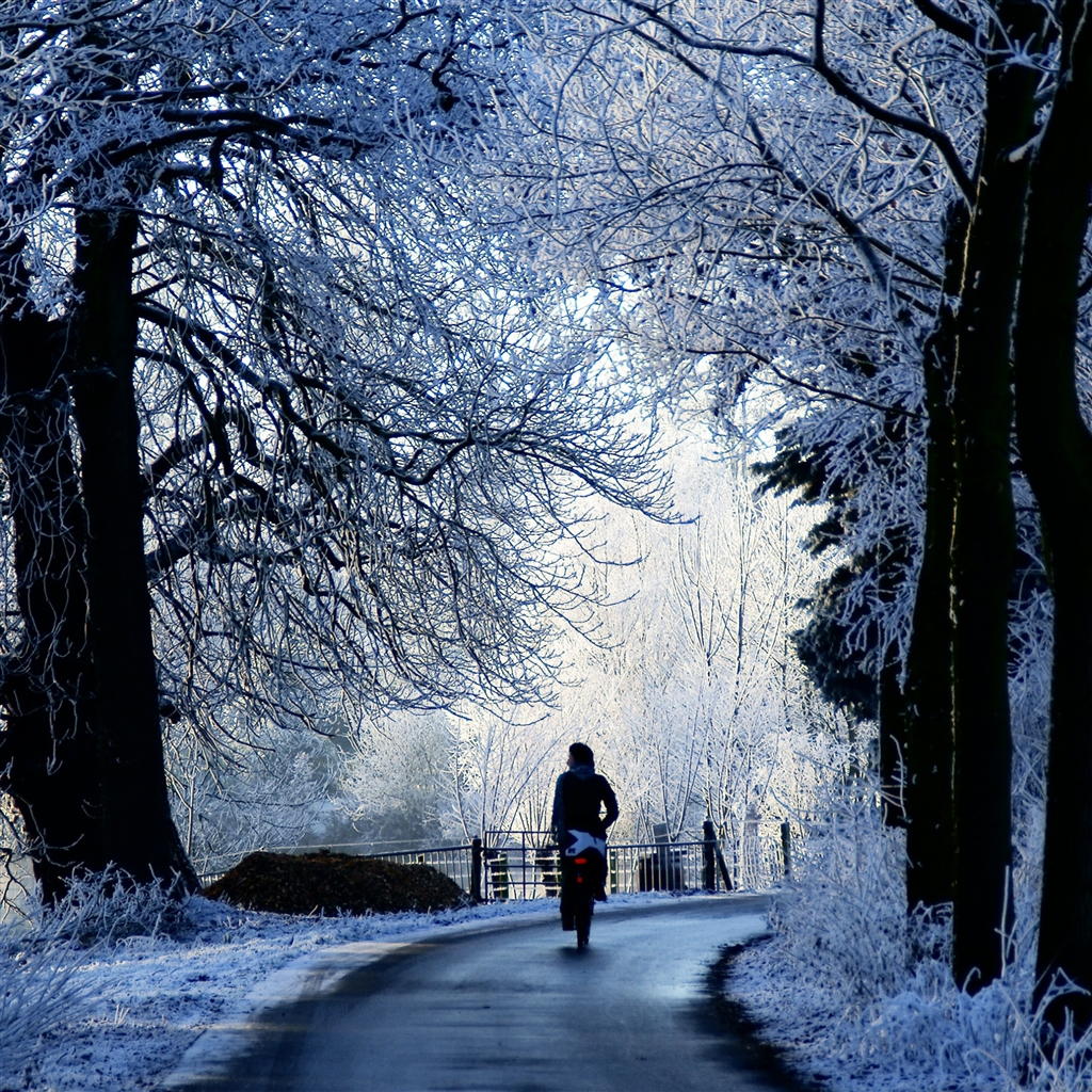 Winter-Road-Scene-ipad-4-wallpaper-ilikewallpaper_com_1024
